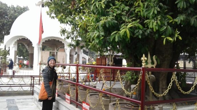 emily rudraksh tree hari har ashram