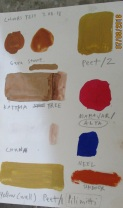 Napatt P - testing colours - AZIMVTH Ashram