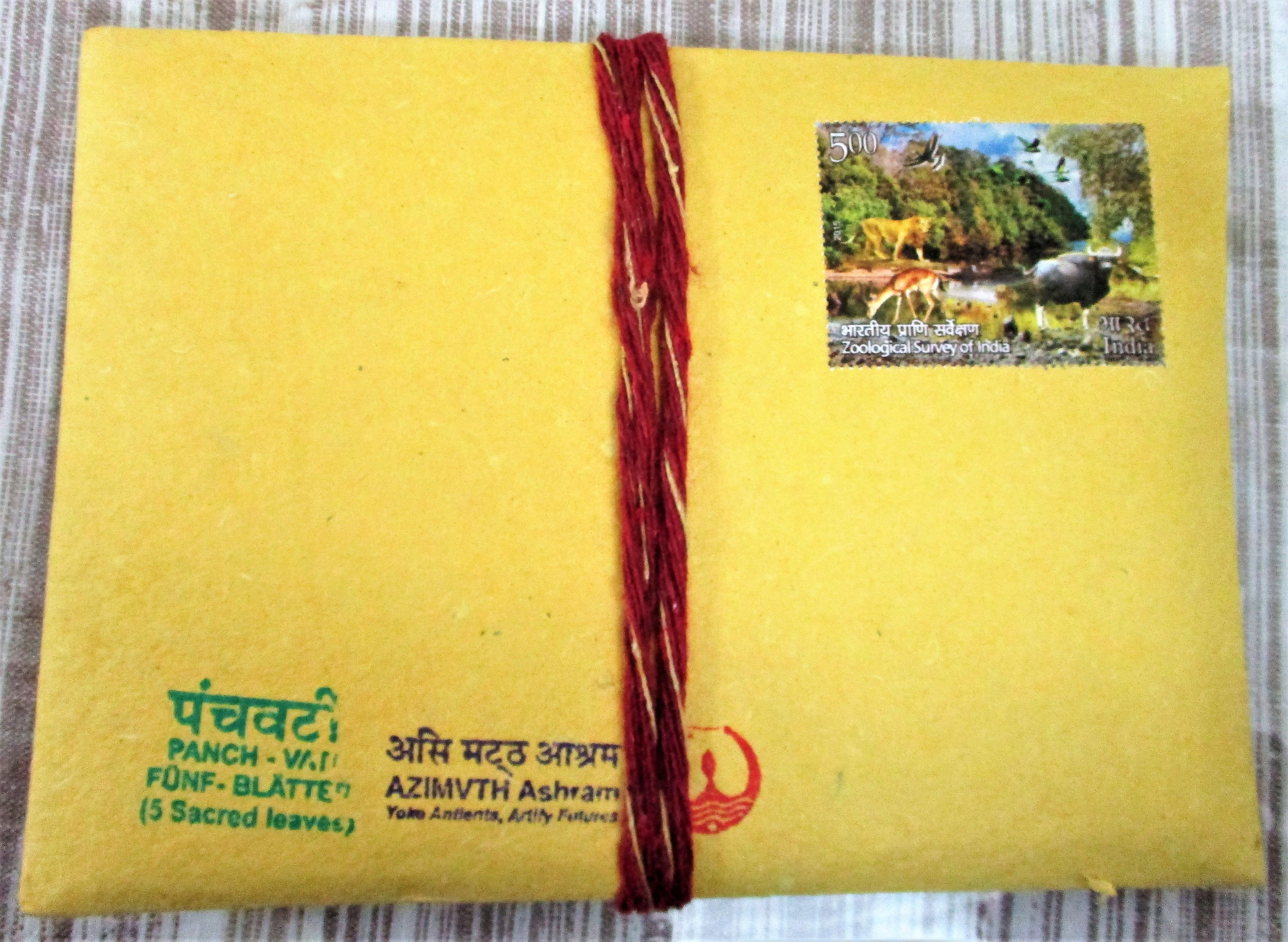 Panch Vati - Packet