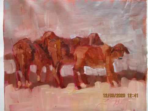 Jennifer Stottle Taylor - animals - cows - 1